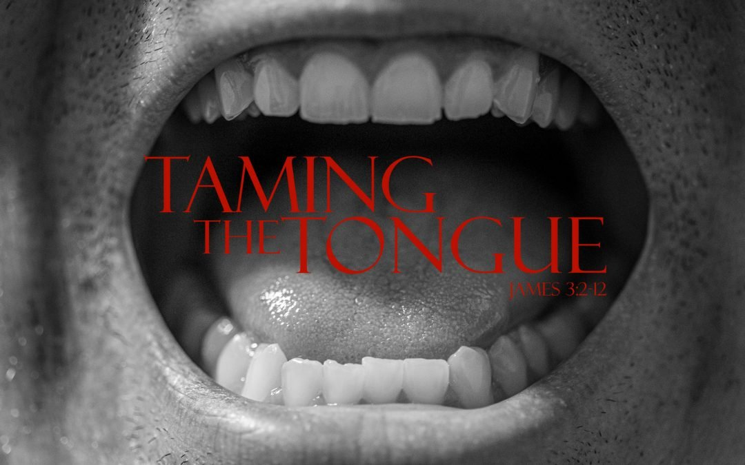Taming the Tongue – James 3:2-12